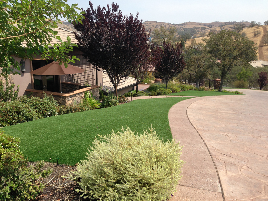 Artificial Turf Canby, California Paver Patio, Small Front Yard Landscaping