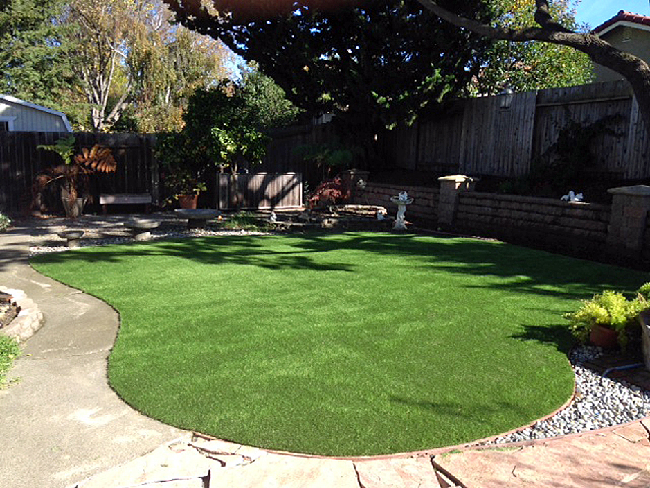 best artificial grass forbestown california garden ideas backyard designs