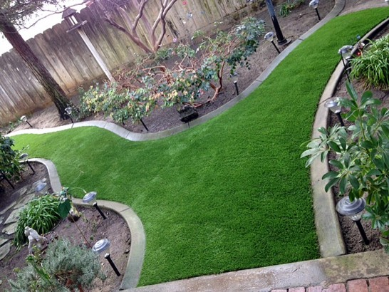 Artificial Grass Photos: Artificial Grass Carpet Brooktrails, California Gardeners, Backyard Ideas