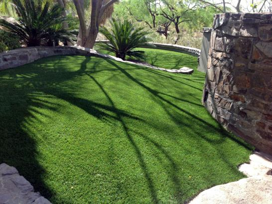 Artificial Grass Photos: Artificial Grass Carpet Canby, California Lawns