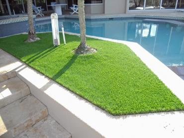 Artificial Grass Photos: Artificial Grass Carpet Fall River Mills, California Home And Garden, Backyard Garden Ideas