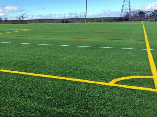 Artificial Grass Photos: Artificial Lawn Humboldt Hill, California Sports Athority