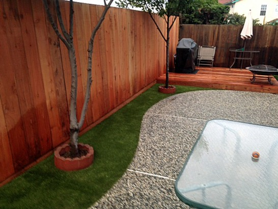 Artificial Lawn Maxwell, California Garden Ideas, Backyard Landscaping Ideas artificial grass