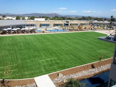 Artificial Grass Photos: Artificial Turf Cost Alturas, California Eco Friendly Products, Commercial Landscape
