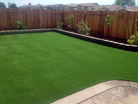 Artificial Turf Installation Portola, California Landscape Ideas, Small Backyard Ideas artificial grass