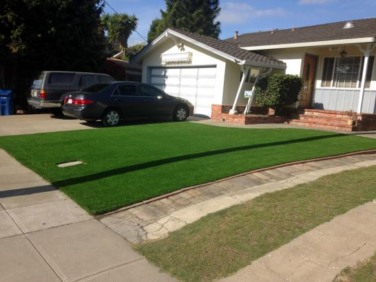 Artificial Grass Photos: Artificial Turf Upper Lake, California Roof Top, Front Yard Landscaping Ideas