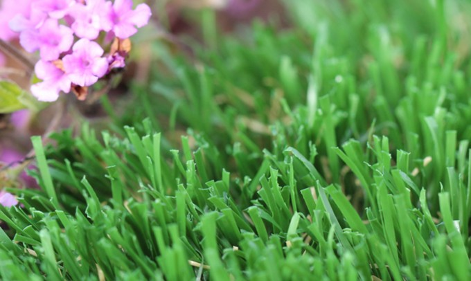 artificialgrass Emerald-52
