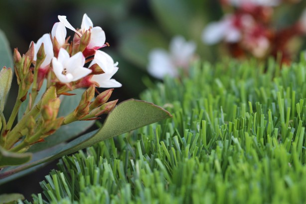 artificialgrass Spring-60
