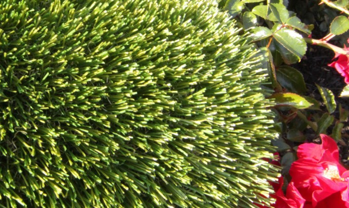 V Blade-64 artificialgrass