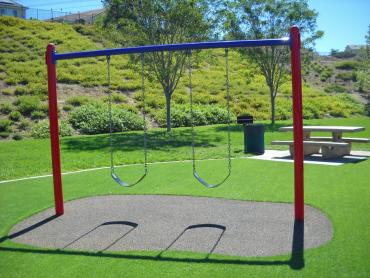 Artificial Grass Photos: Best Artificial Grass Lake Davis, California Playground, Recreational Areas