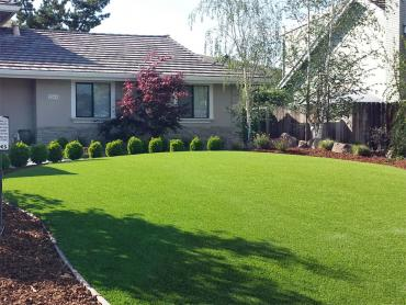 Artificial Grass Photos: Best Artificial Grass Loleta, California Paver Patio, Small Front Yard Landscaping