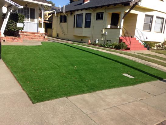 Artificial Grass Photos: Best Artificial Grass Montgomery Creek, California Landscape Photos, Front Yard Landscaping