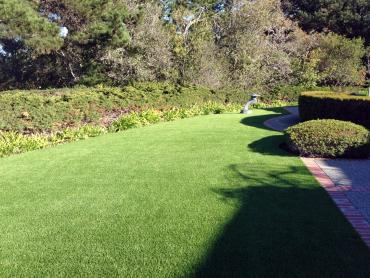 Artificial Grass Photos: Best Artificial Grass Talmage, California Backyard Playground, Front Yard Landscape Ideas