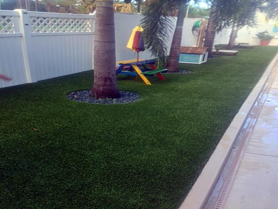 Artificial Grass Photos: Fake Grass Carpet Boonville, California City Landscape, Backyards