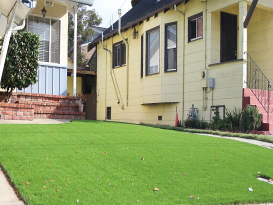 Artificial Grass Photos: Fake Grass Carrick, California Landscaping Business, Front Yard Landscape Ideas