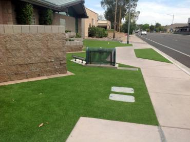 Artificial Grass Photos: Fake Grass Loleta, California Landscaping Business, Front Yard Landscape Ideas