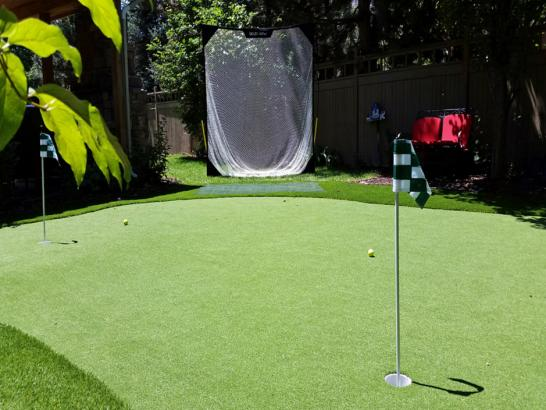 Artificial Grass Photos: Fake Grass Tulelake, California Garden Ideas, Backyards