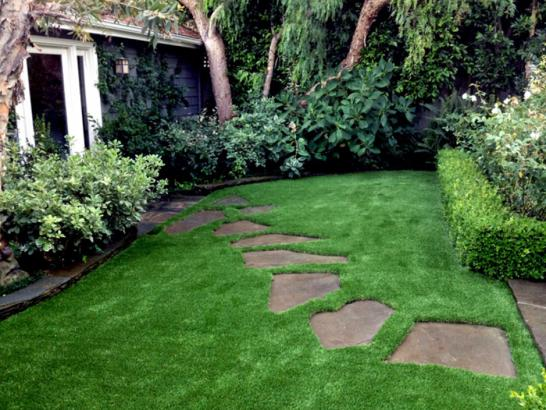 Artificial Grass Photos: Fake Lawn Colfax, California Landscape Photos, Backyards