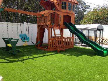 Artificial Grass Photos: Fake Lawn Mohawk Vista, California Landscaping, Small Backyard Ideas