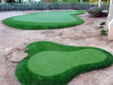 Artificial Grass Photos: Fake Turf Eagleville, California Backyard Playground, Small Front Yard Landscaping