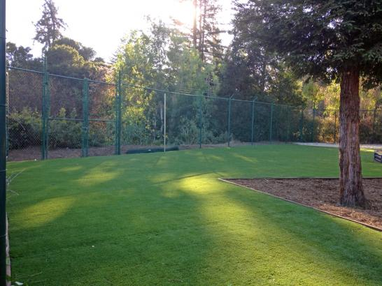 Artificial Grass Photos: Fake Turf Shasta Lake, California City Landscape, Recreational Areas