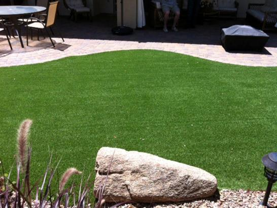Artificial Grass Photos: Fake Turf Williams, California Gardeners, Backyard Garden Ideas