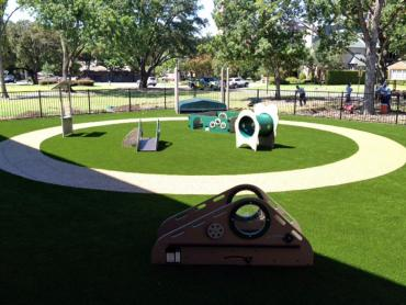 Artificial Grass Photos: Faux Grass Richvale, California Indoor Playground, Commercial Landscape