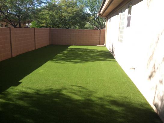 Artificial Grass Photos: Grass Turf Calpella, California Landscape Ideas, Backyard Landscaping Ideas