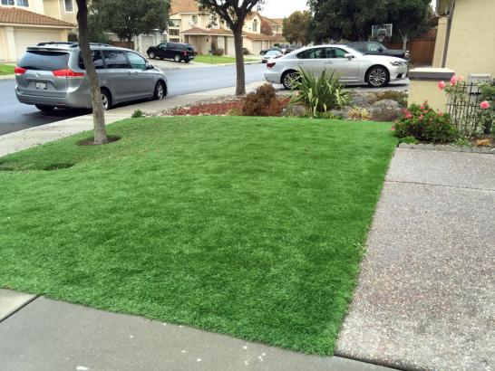 Installing Artificial Grass Gazelle, California Backyard Playground, Front Yard Landscape Ideas artificial grass