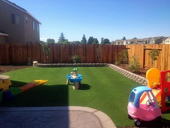 Artificial Grass Photos: Installing Artificial Grass Nicolaus, California Garden Ideas, Backyard Landscaping