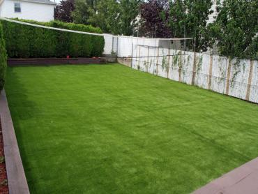 Lawn Services Linda, California Backyard Playground, Backyard Makeover artificial grass