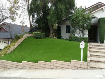 Artificial Grass Photos: Lawn Services Miranda, California Roof Top, Landscaping Ideas For Front Yard