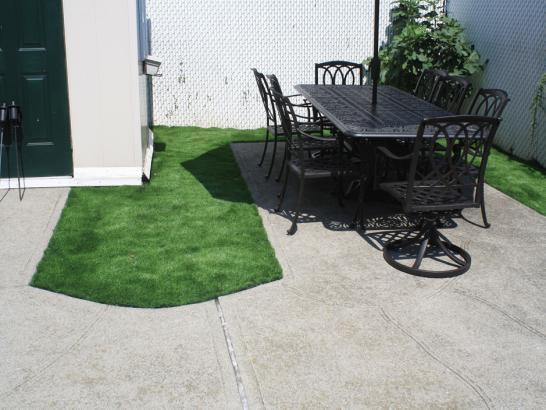Artificial Grass Photos: Lawn Services Nice, California Home And Garden, Backyard