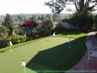 Artificial Grass Photos: Outdoor Carpet Cottonwood, California Putting Green Turf, Backyard Designs