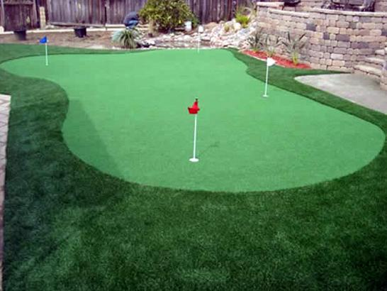 Artificial Grass Photos: Outdoor Carpet Fort Jones, California Rooftop, Backyard Landscape Ideas