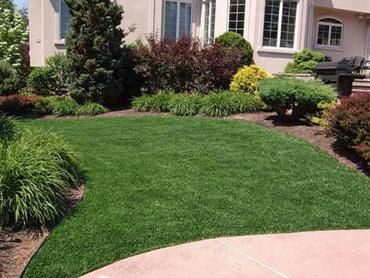 Artificial Grass Photos: Outdoor Carpet Laytonville, California Lawn And Landscape, Front Yard
