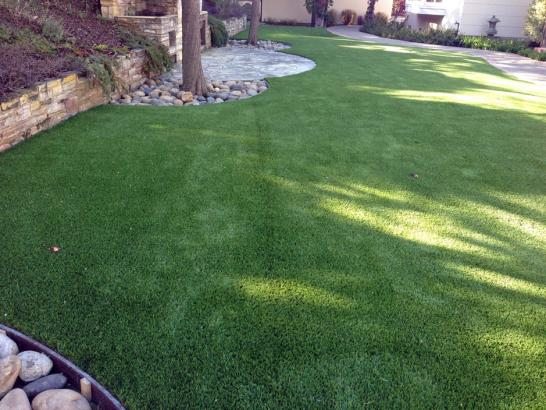 Artificial Grass Photos: Outdoor Carpet Milford, California Lawns, Backyard Landscaping