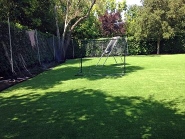 Artificial Grass Photos: Plastic Grass Loyalton, California Design Ideas, Backyards