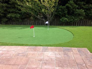 Artificial Grass Photos: Synthetic Grass Cost Bayview, California Indoor Putting Green, Backyard Landscape Ideas