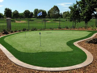 Artificial Grass Photos: Synthetic Grass Cost Edgewood, California How To Build A Putting Green, Backyard Design