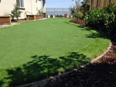 Artificial Grass Photos: Synthetic Grass Cost Myrtletown, California Gardeners, Backyard Designs