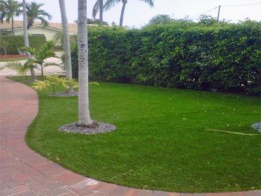 Synthetic Grass Fort Bragg, California Landscaping, Front Yard Ideas artificial grass