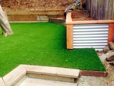 Artificial Grass Photos: Synthetic Grass Orland, California Roof Top, Backyard Landscape Ideas