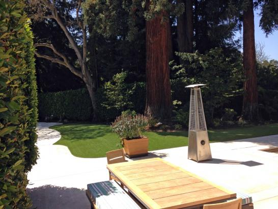 Artificial Grass Photos: Synthetic Turf Loma Rica, California Design Ideas, Backyard Designs