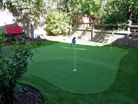 Artificial Grass Photos: Synthetic Turf Quincy, California Lawns, Backyard Design