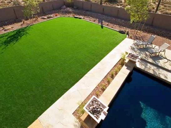 Artificial Grass Photos: Synthetic Turf Supplier Calpine, California Landscaping, Swimming Pool Designs