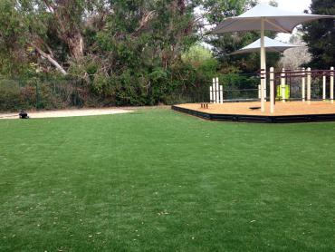 Artificial Grass Photos: Synthetic Turf Supplier Hat Creek, California Playground Flooring
