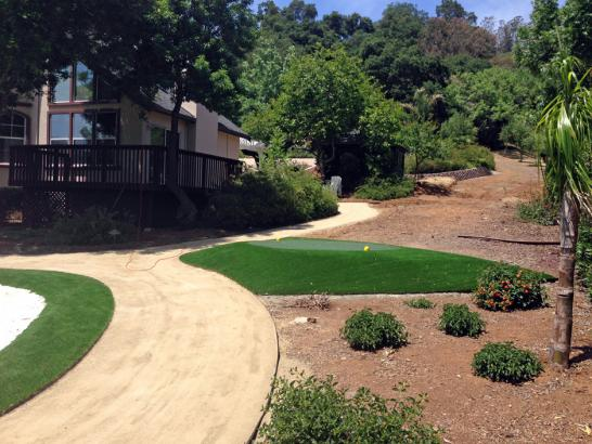 Synthetic Turf Supplier Lake Almanor Peninsula, California Indoor Putting Green, Landscaping Ideas For Front Yard artificial grass
