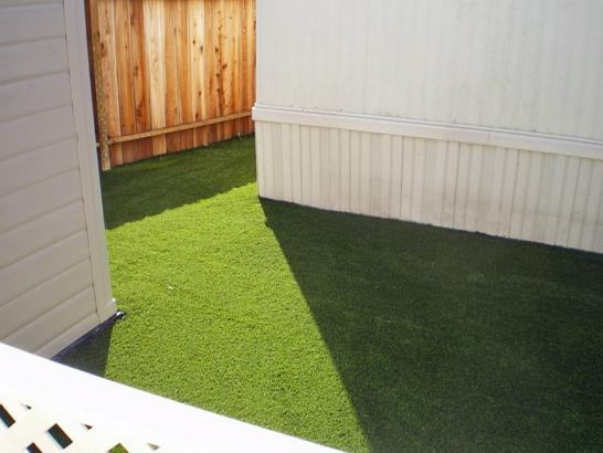 Artificial Grass Photos: Synthetic Turf Supplier Nord, California Home And Garden, Backyard Makeover