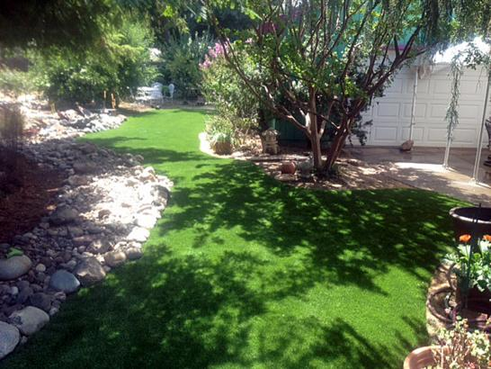 California Landscaping Ideas fake turf fields landing, california landscape ideas, small front